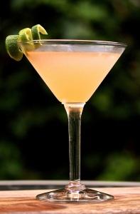 Pegu-Club-Cocktail-portrait